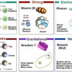 El modelo estándar y el bosón de Higgs: Interacciones básicas