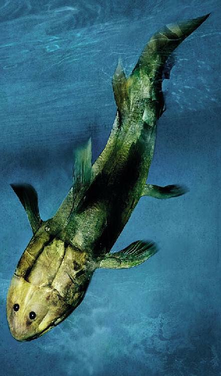 antepasado hombre 185 millones anos