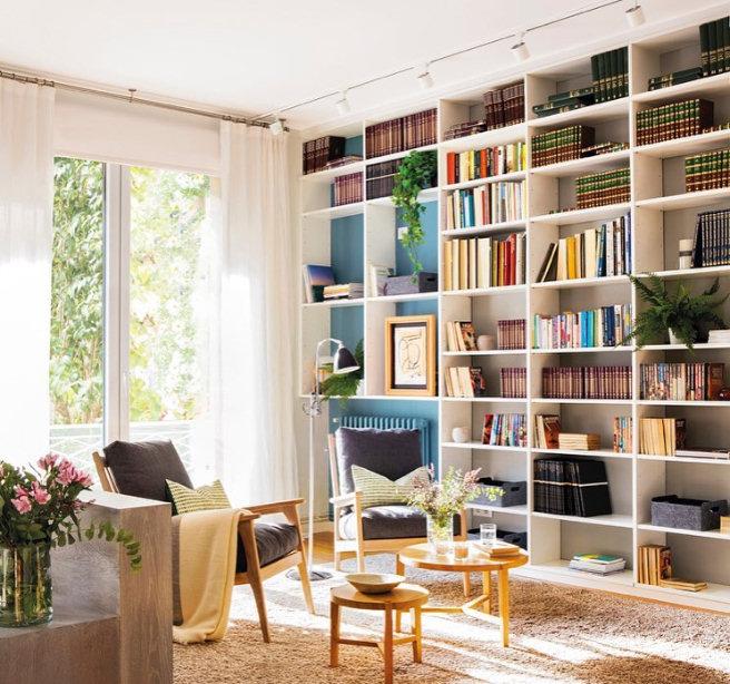 decoracion plantas libros